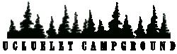 Park Logo